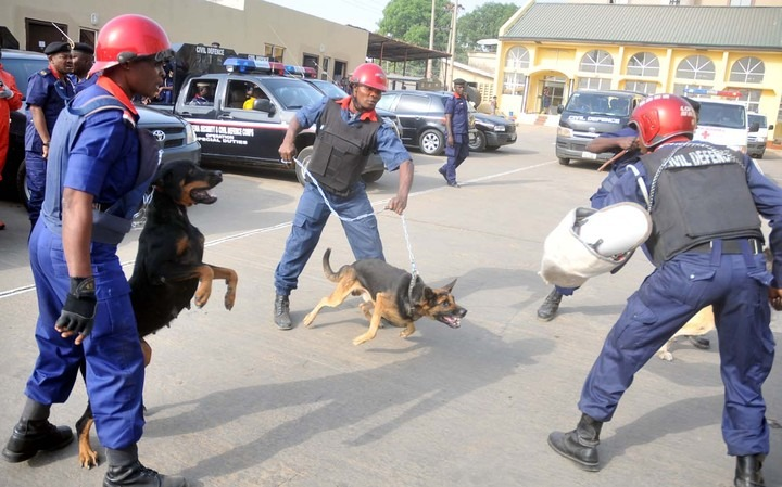 Lawyer Petitions Civil Defence Commandant General Over Assault of Man