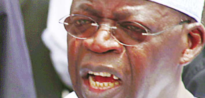 Fashola's 'Pig And Wrestler': Tinubu Personified – By Ridwan Omooba