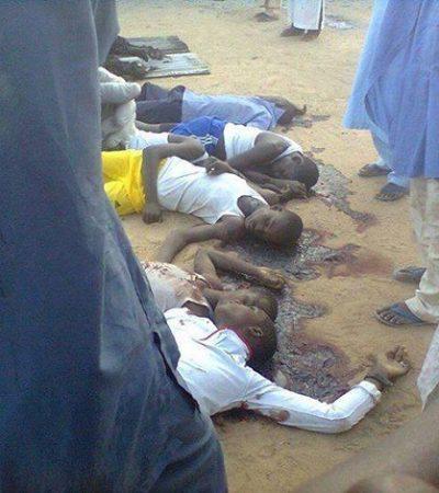 Boko Haram kill 11, injured 17 in Gajigana