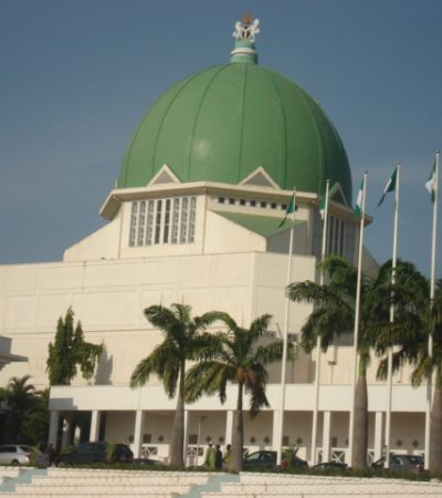 Nigeria's 8th National Assembly; This Lion Must Be Tamed! – By Odozi Nwodozi