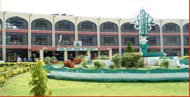 Adamawa: Lawmakers Asked To Slash Pay By 50%