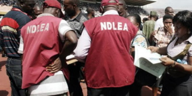 NDLEA Intercepts 41,180.422kg Of Drugs In Edo