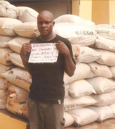 NDLEA Intercepts N48 Million Naira, Cannabis At Abuja