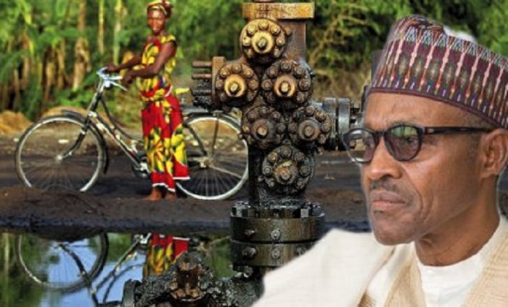Niger Delta: FG Urged To Grant Operational License To Indigenous Firm