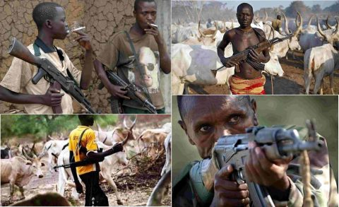 Fulani Herdsmen Set Fire On National Youth Center In Anambra, Millions Destroyed
