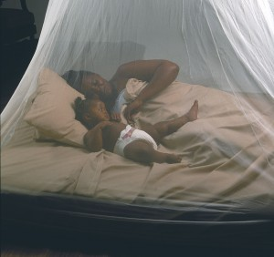 Malaria In Recession: Mosquito Nets To The Rescue