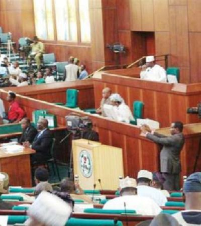 House Of Representatives Condemns Police For Teargasing IDPs