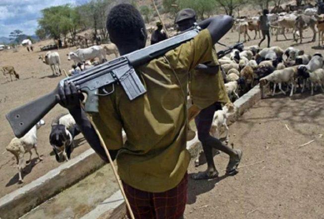 One Killed As Nasarawa Farmers, Fulani Herdsmen Clash Again