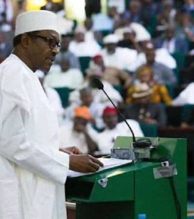 Presidency To Sue N'Assembly Over Power Of Appropriation