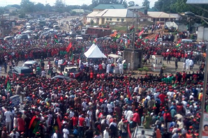 """Hold Buhari, Ohaneze Resposible If IPOB Turn Violent"" – IPOB"