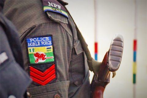 Police Arrest Cattle Rustlers, Recover 413 Cattle