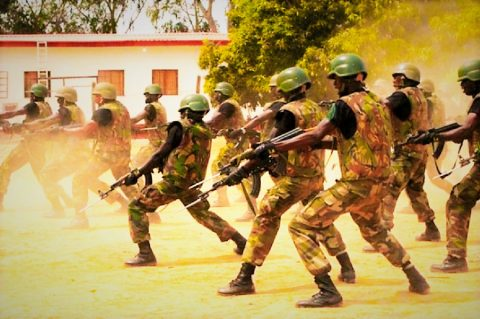 Herdsmen/Farmers Crisis And The Nigerian Army Example – By Charles Ibekwe