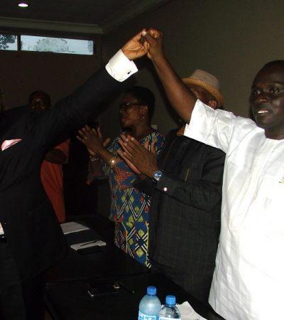 Okonkwo Emerges ADP Anambra Gubernatorial Candidate