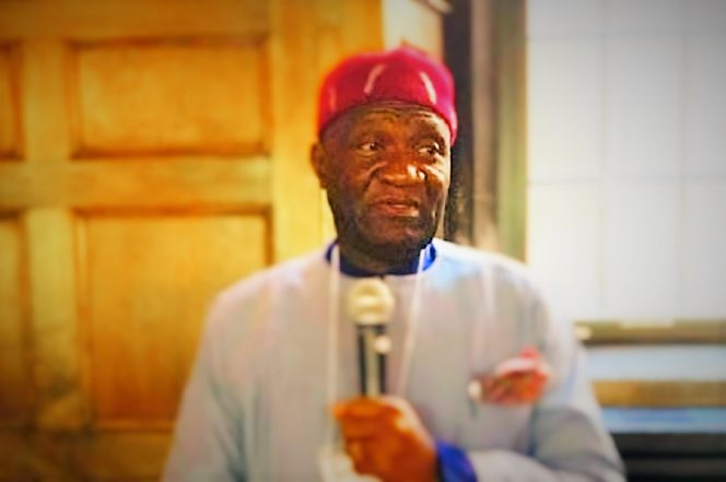 """IPOB Is Riddled With Factions And I'm In Touch With Leaders Of These Factions"" – Nnia Nwodo"