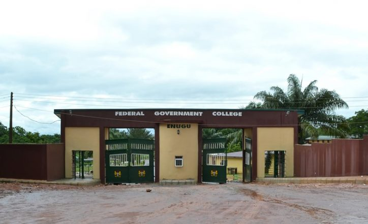 Re: Federal Government College Indebtedness To Food And Stationeries Suppliers