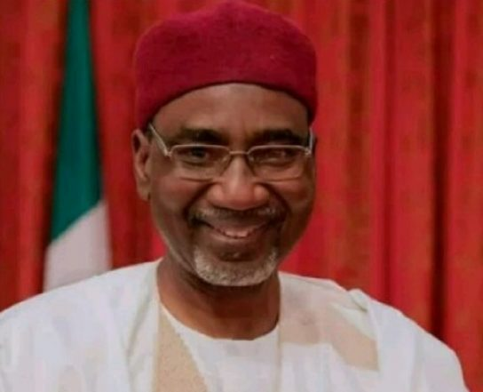 Northern Youth Groups Tackle Buhari Over Dismissed NIA Boss