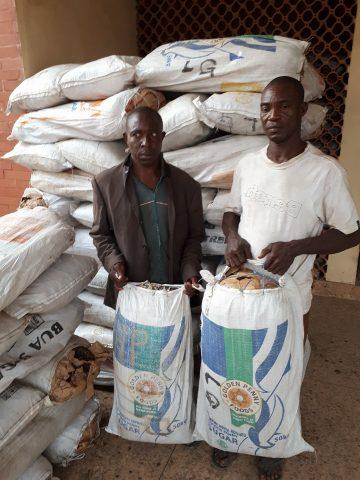 Edo NDLEA Discovers Cannabis Warehouse In Ugbubezi