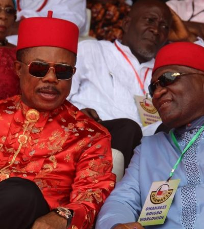 Group urges Ohaneze to remain apolitical, focus on ideals of founding fathers