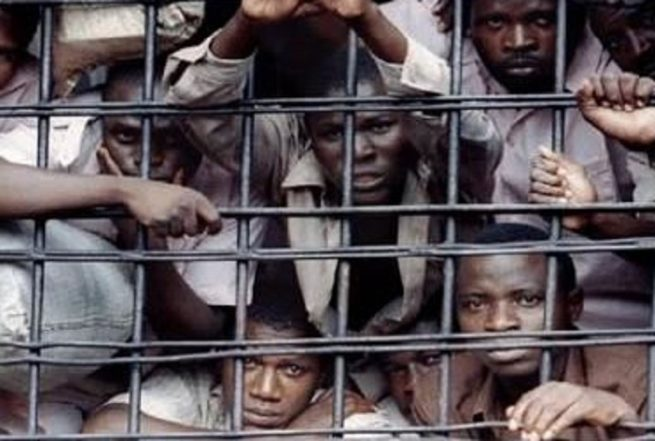 """""""Prison Officials Are Planning To Kill IPOB Members In Jail"""" – Lawyer"""