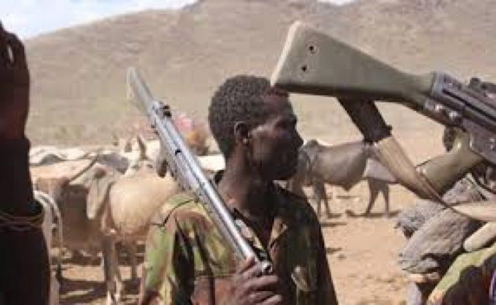 [Video] Fulani Herdsmen Rob Transporters At Gunpoint Along Lagos/Benin Road