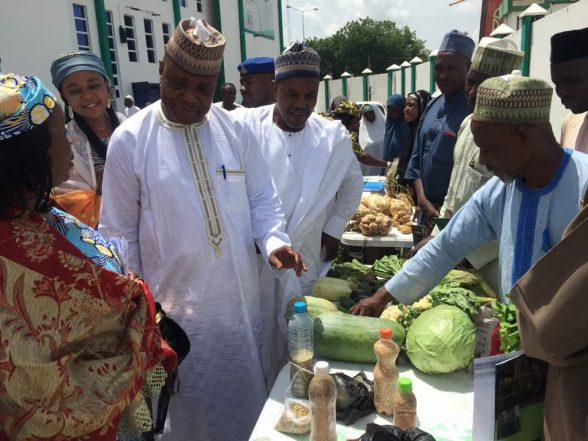 FG Commissions Nigerian Agri-Business, Agro-Industry Initiative In Kano