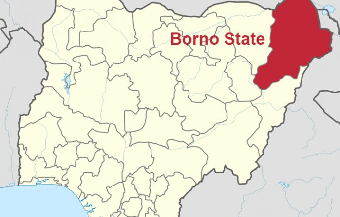 Resist Imposition Of Candidates, Group Urges Borno Electorate