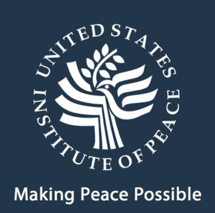 USIP Report: Call Buhari, APC to Order, PDP Urges World Leaders
