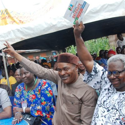 APC Enugu State Charpter: Who Will Beel The Cat? – By Amb. Mrs.Ginika Tor-Williams