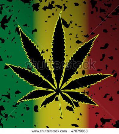 Jamaica police seize 952 kilos of Ganja