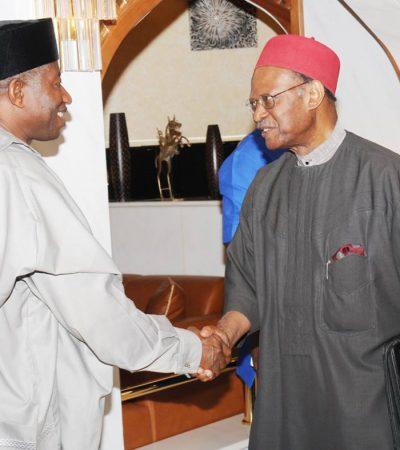 Insurgency: Jonathan Meets Anyaoku, PAC Members
