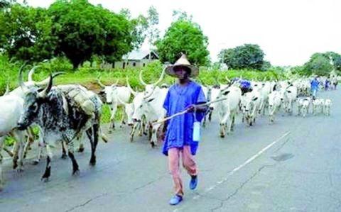 Tension in Enugu Community…As Fulani herdsmen kill farmer