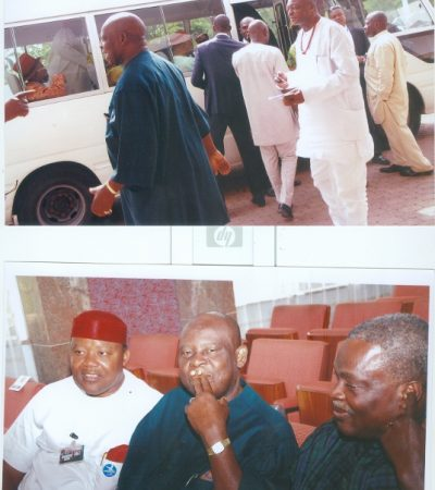Ohaneze reaffirm support for six zonal structure