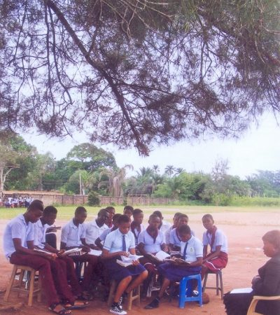 Imo Students Study Under Trees