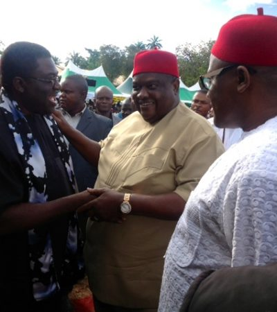 PDP Chieftain Drums Support For Madumere