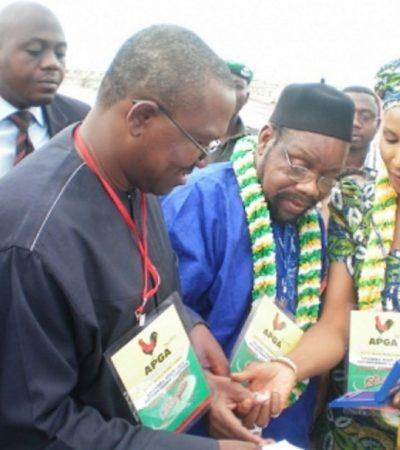 Peter Obi – Beyond The Visit To Odumegwu Ojukwu's Grave – By Chief Bonaventure C. Mokwe