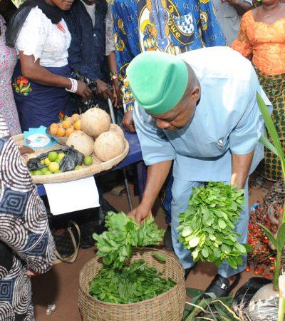 Imo Farmers Back Ihedioha For Governorship