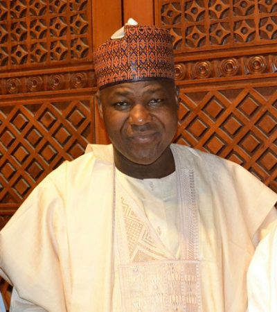 Speakership: North-Central, North-West Zone Youths Back Dogara