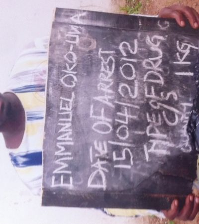 NDLEA Nabs Unrepentant Cannabis Dealer From Ebonyi