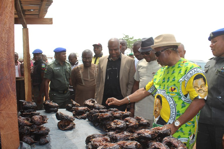 Anambra State Governor, Chief Willie Obiano pricing dry fish across Ezu Bridge in Ayamelum Local Government Area