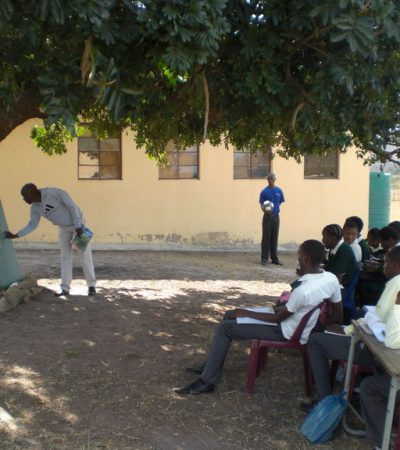 Delta Secondary School Where Principal Turns Cashew Tree to Office