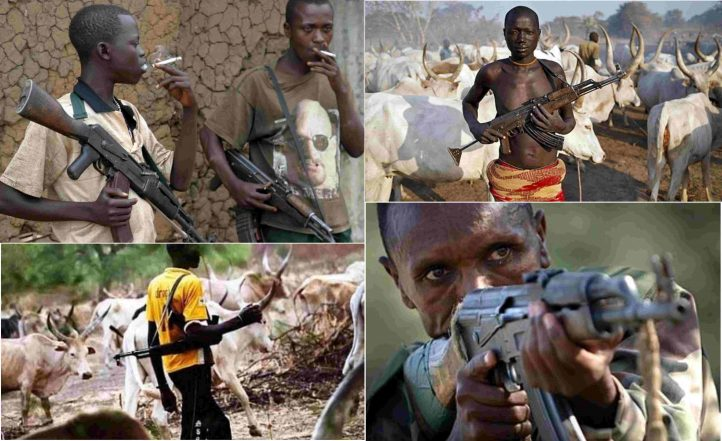 Herdsmen-Farmers' Clashes Today: Ecology, Class and Categorical Politics in Contemporary Nigeria – By Omotoye Olorode