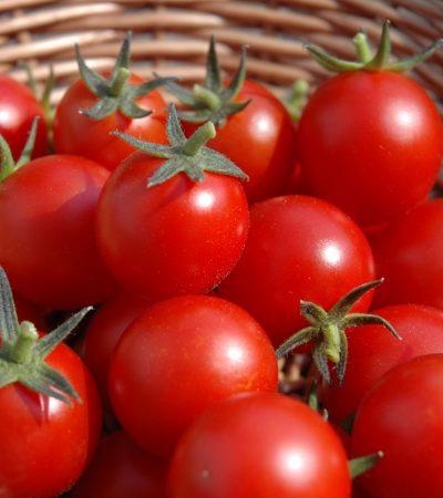 Tomato Scarcity As Metaphor –ByReuben Abati