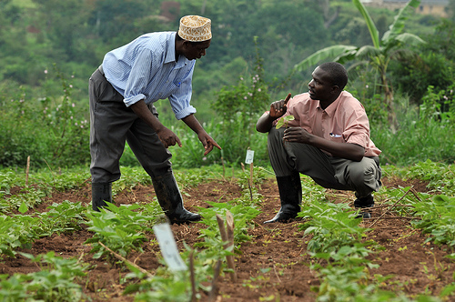 Benue Govt To Purchase, Subsidize Fertilizers, Tractors For 2018 Cropping Season