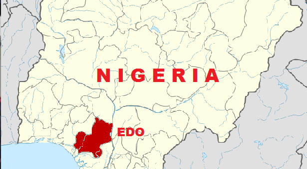 Edo Guber: Field Reports Project PDP Likely Winner