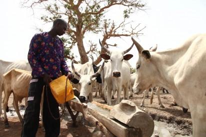 Herdsmen Kill 20 In Kaduna; 24-hr Curfew Imposed