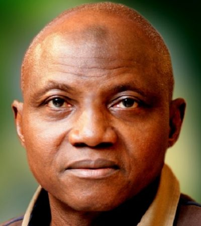 Economics, Economist, Financial Times And Nigeria – By Garba Shehu