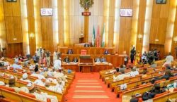 Flaws in Senate's Version of South East Development Commission Bil