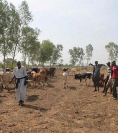 Banditry: Sokoto govt. to form joint community watch volunteers