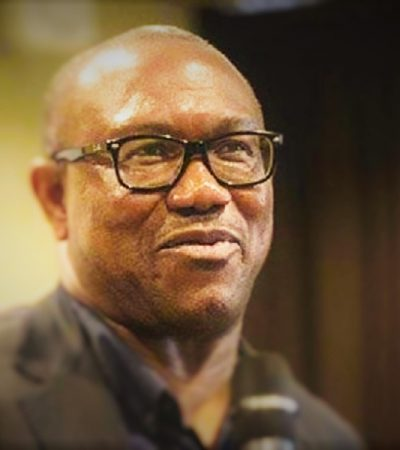 PDP Guber: Party Faithfuls Protest At Peter Obi's LGA Headquarter