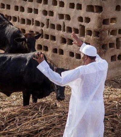 2019 Polls: Buhari As The 'Issue' – ByEhichioya Ezomon